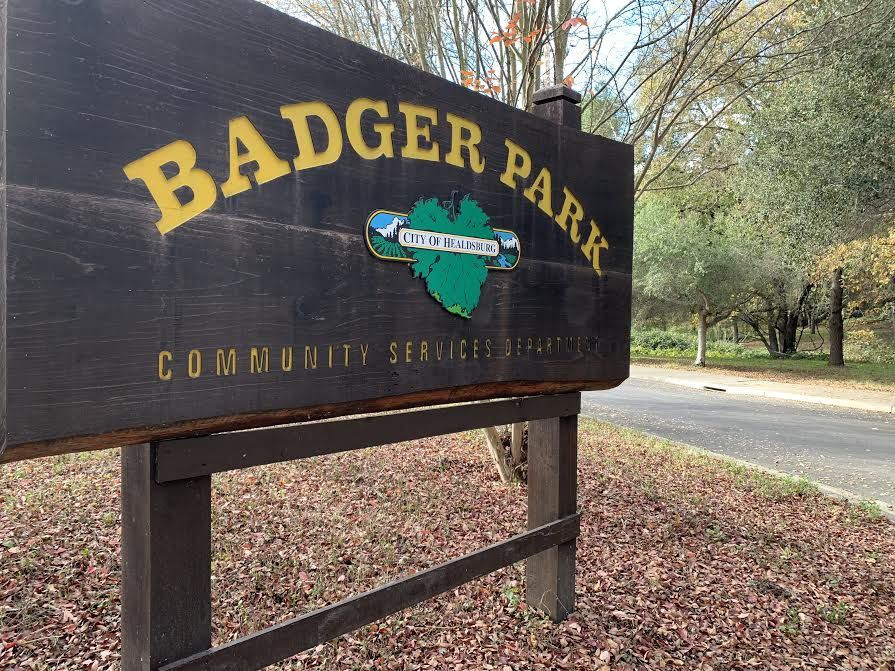 Parks-Badger park sign